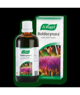 BOLDOCYNARA 50ml